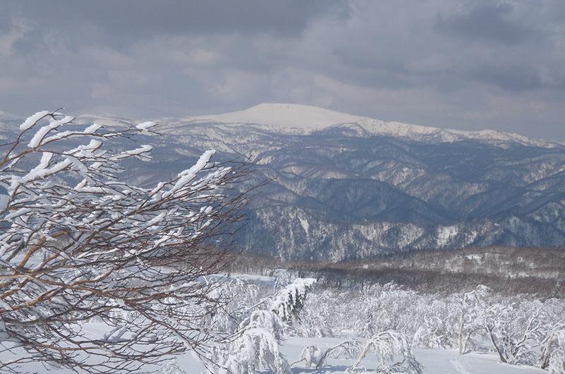 札幌岳から無意根山 4月